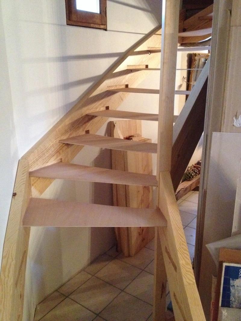 Escalier provisoire devenu définitif en pin sylvestre, à double balancements - Page 3 Img_0017