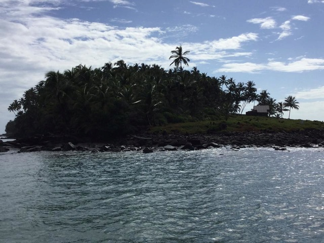 La Guyane - Page 2 Ile_du10