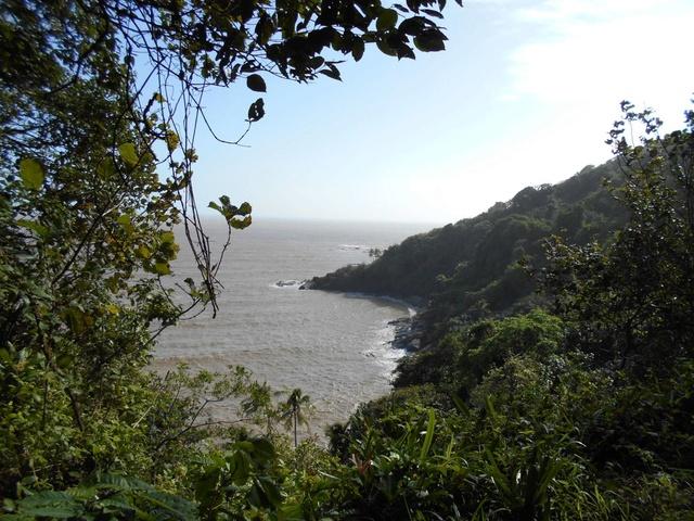 La Guyane - Page 2 Ile_du14