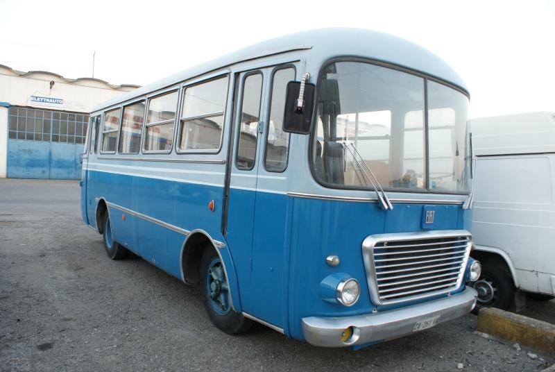 Fiat Dsc09910