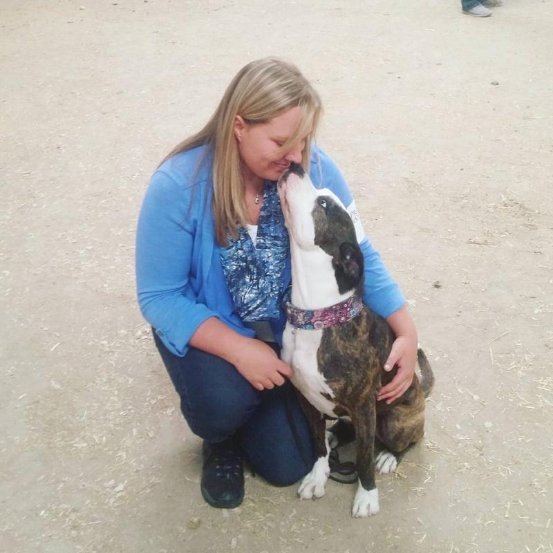 Blackfoot dog show 2016 13419011