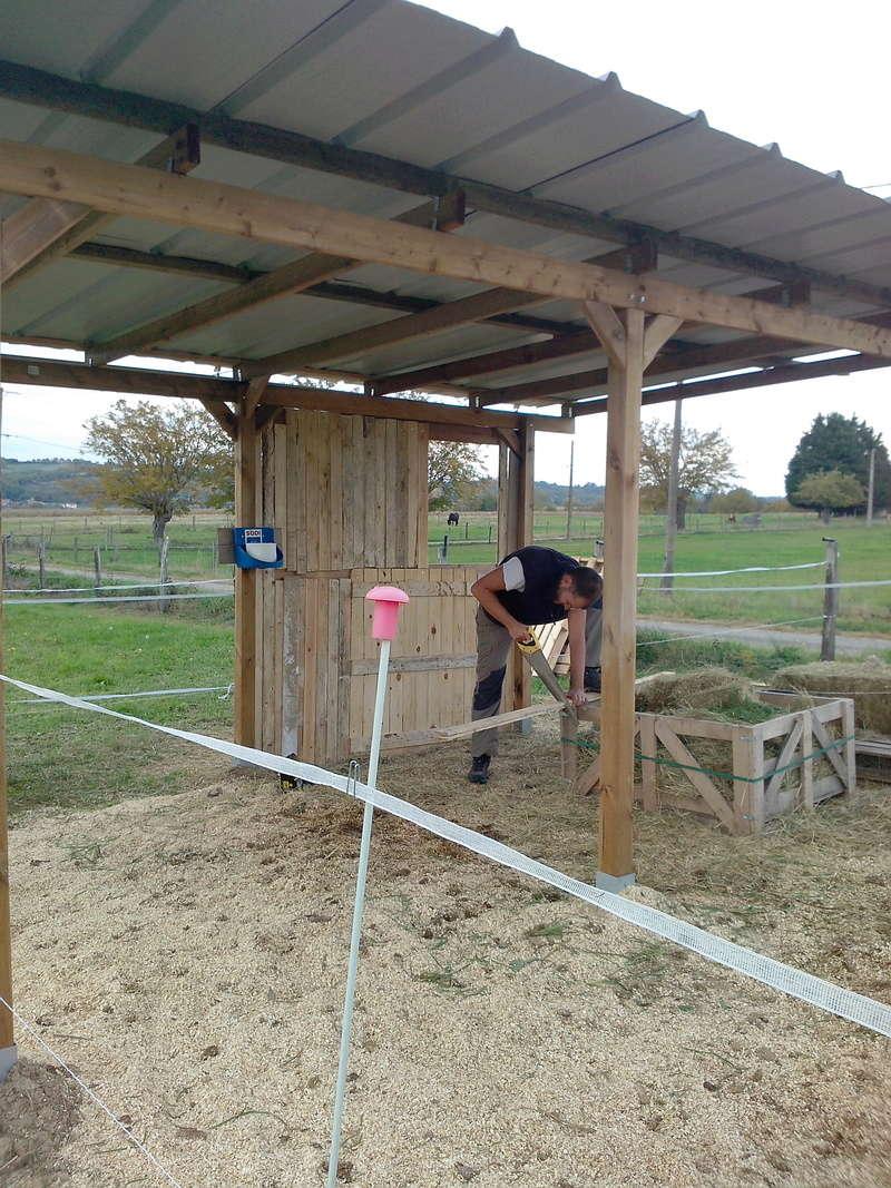 construire un abri dans un pré  2015-118