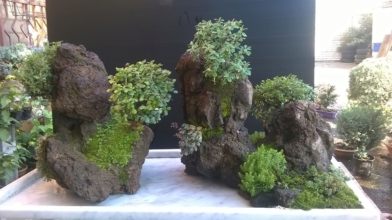 Penjing- landscape ...........work in progress Wp_20114