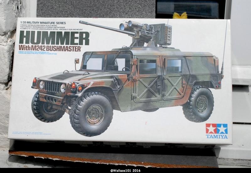 Hummer with M242 Bushmaster (Tamya 1/35, PANZER ART) pré-assemblage de la caisse Dsc_0512