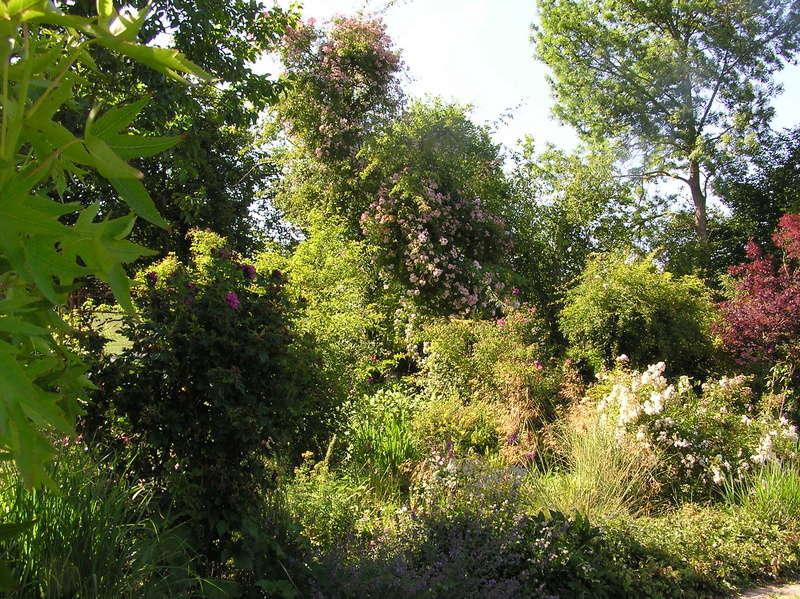 Jardins du nord - Picardie - Nord-Belgique - Champagne-Ardennes P1010010