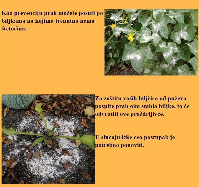 Ekološka zaštita bilja Screen14