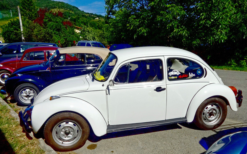 VWarbacoa 2016 - 3 julio La Muera (Orduña) - FOTOS Dsc02221