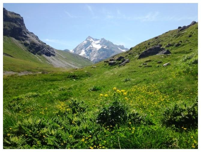 Quelques jours en Savoie - Juillet 2016 0512