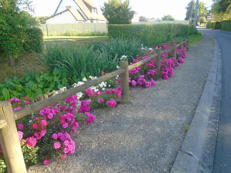 fleurs de fouqueville Fleurs76