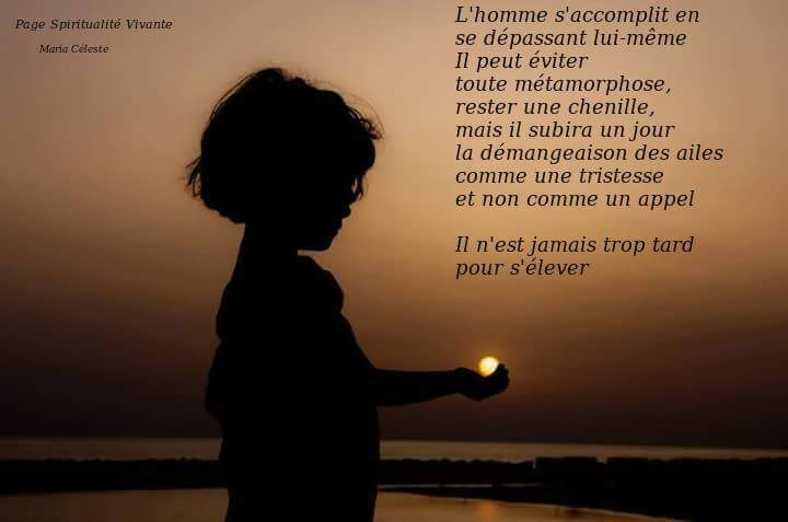 Citations que nous aimons - Page 7 Metamo10