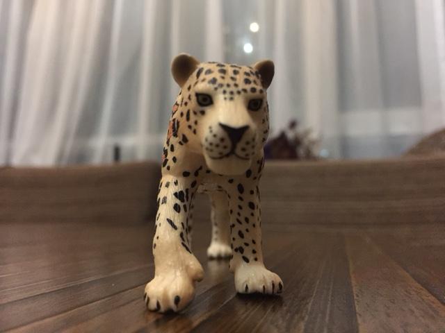Mojo Fun 387018 Leopard - New Paintwork Img_1111