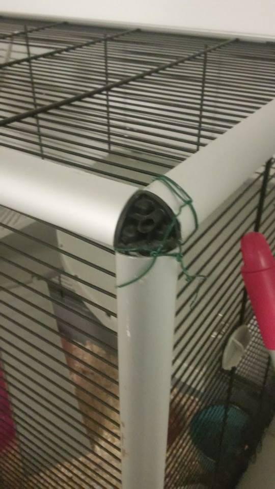 Vend cage + accessoires Nantes/Paris 12625610
