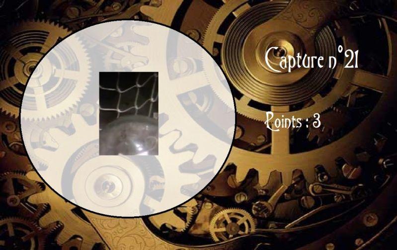 La Capture d'Image - Jeu à durée indéterminée  - Page 6 Capt2110