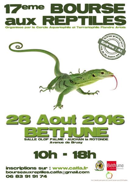 Bourse de Béthune - 28 Août 2016 C1b8ff10