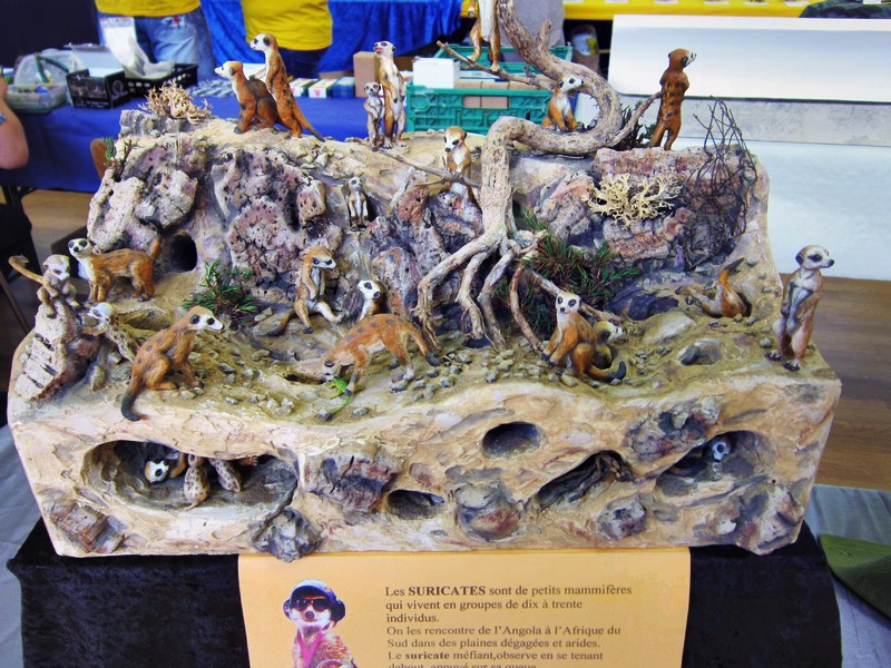 Expo de Illfurth les 2 et 3 juil 2016 Img_4209