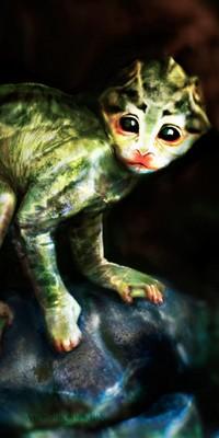 Le singe-grenouille The_mo10