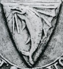 gladiator de chez ARES Forez-10