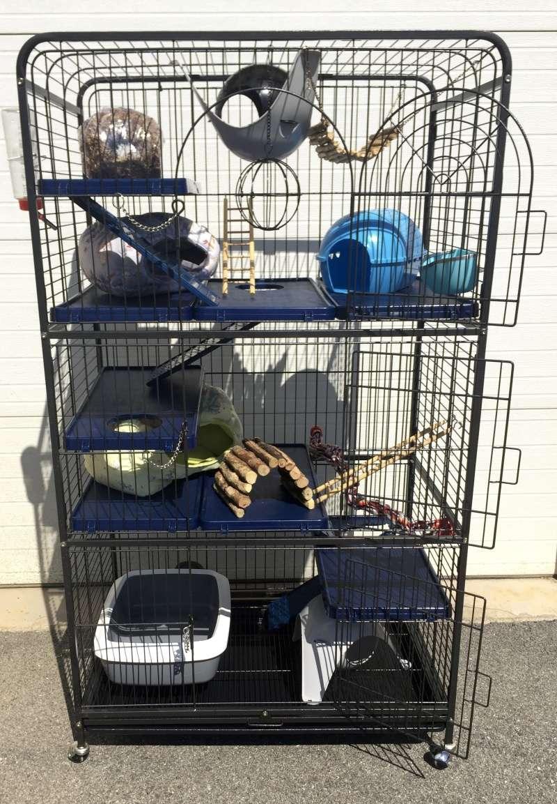 Vends grande cage + nombreux accessoires (38) Img_9113