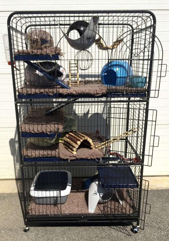 Vends grande cage + nombreux accessoires (38) Img_9114