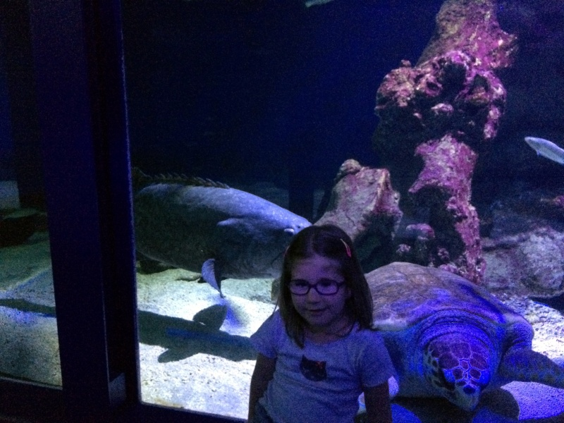 Sortie en famille aquarium Seaquarium Le Grau Du Roi Img_2128