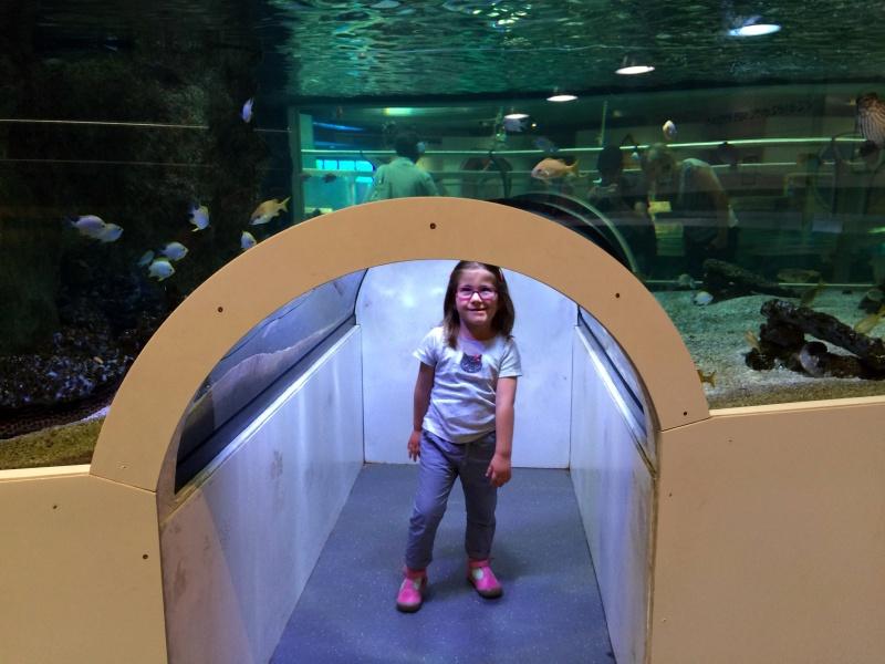Sortie en famille aquarium Seaquarium Le Grau Du Roi Img_2213