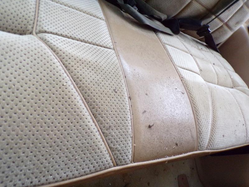 Recherche garniture beige de panneau S1 136_0714