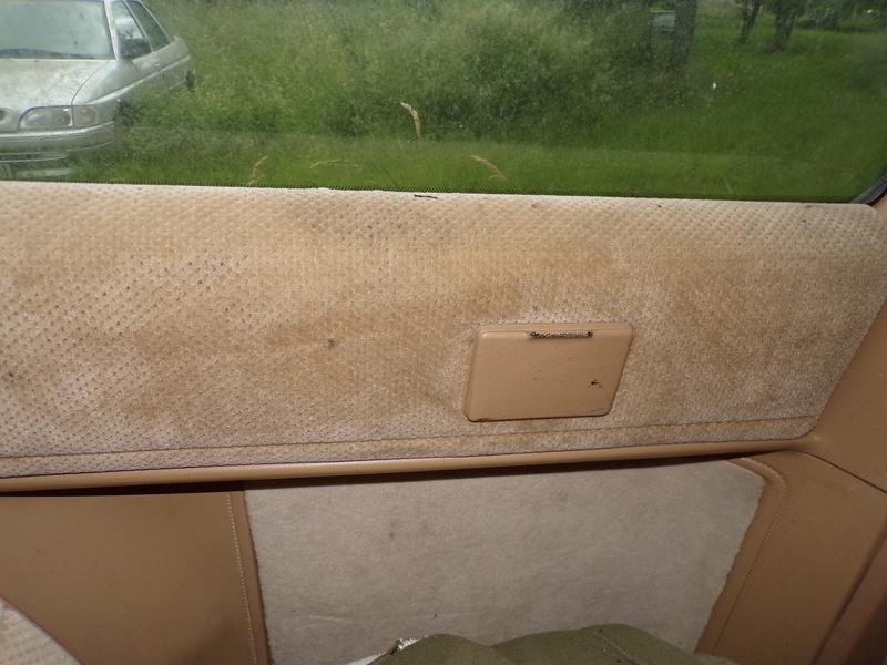 Recherche garniture beige de panneau S1 136_0715