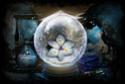 Bolas de Cristal Bolade11