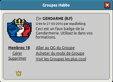 Faux badge gendarmerie spécial forma Captu117