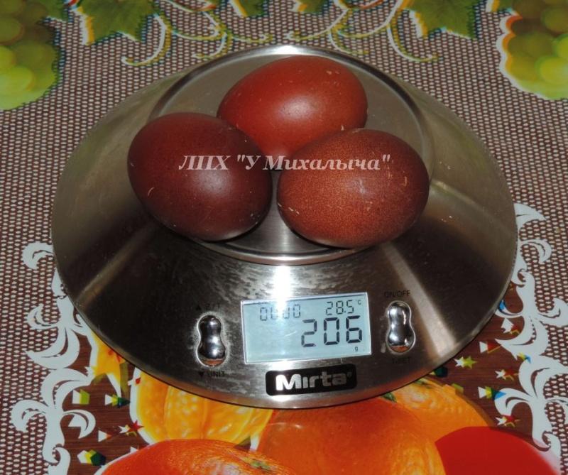 Мараны - порода кур, несущие пасхальные яйца - Страница 10 Ez-eoa13