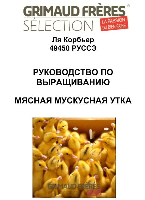 Мускусные утки (индоутки) - ч.6 Image195