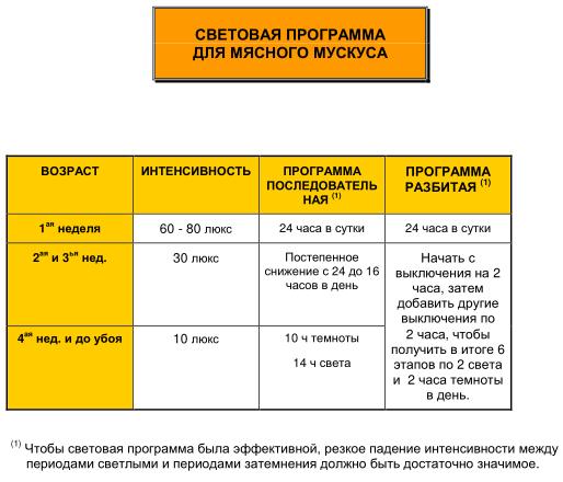 Мускусные утки (индоутки) - ч.6 Image201