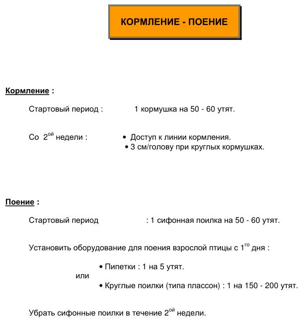 Мускусные утки (индоутки) - ч.6 Image202