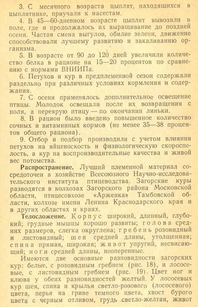 Загорская лососевая порода кур - Страница 2 Izaeaz71