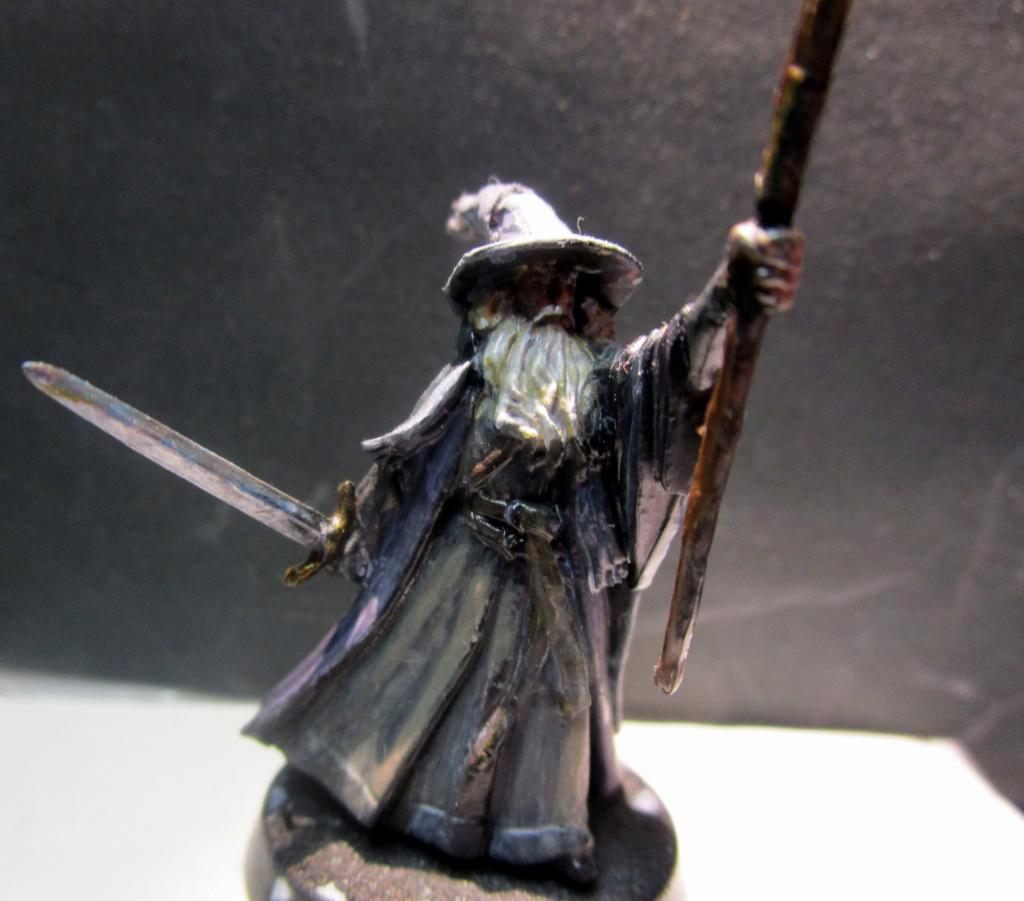 Un archer Elfe... pour dégommer les trolls de Brist !! 2016_011