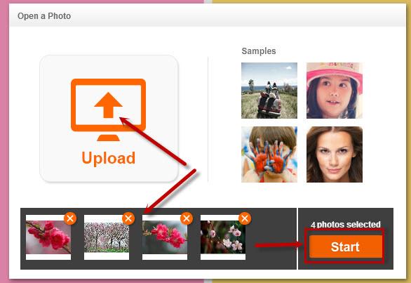 Phần mềm photocat online
