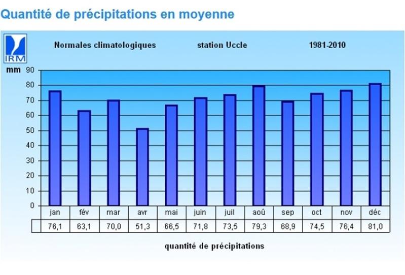 Un été typique à la belge ? B8e88311
