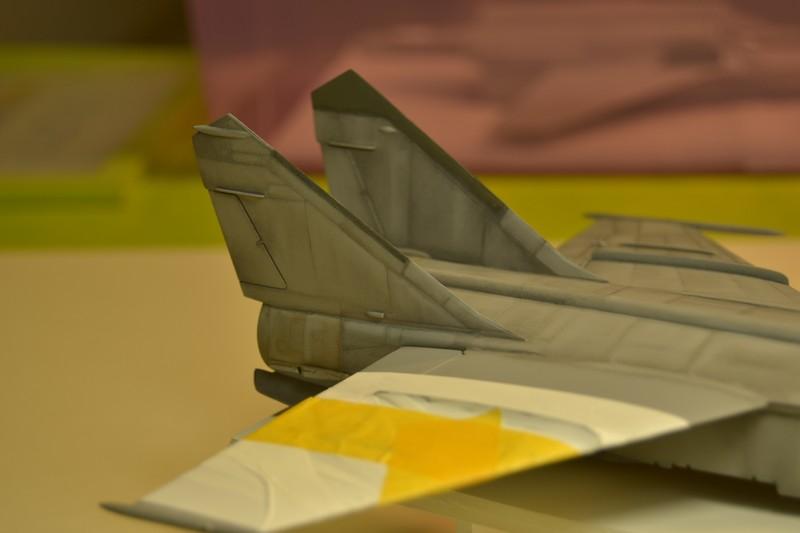 MIG 25 R  (Condor+Armory ) - Page 4 019_8010