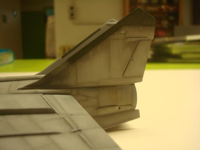MIG 25 R  (Condor+Armory ) - Page 4 Dsc06910