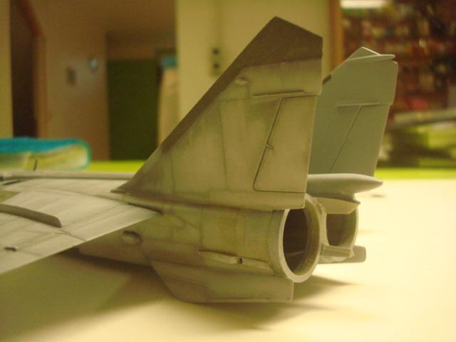 MIG 25 R  (Condor+Armory ) - Page 4 Dsc06912
