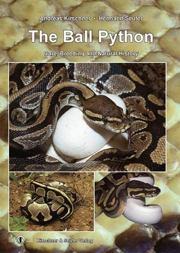 [Fiche] Python regius 1710