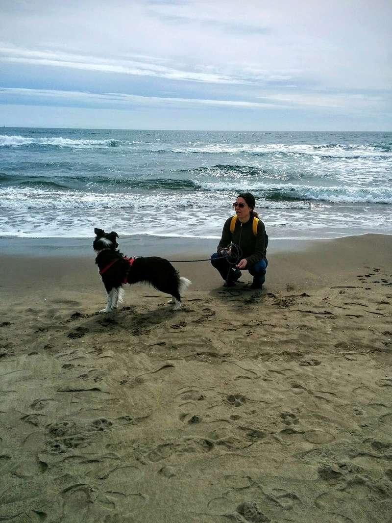 Photos de vous et vos chiens en pleine activité (course, vtt,ring, ..) Img_2012