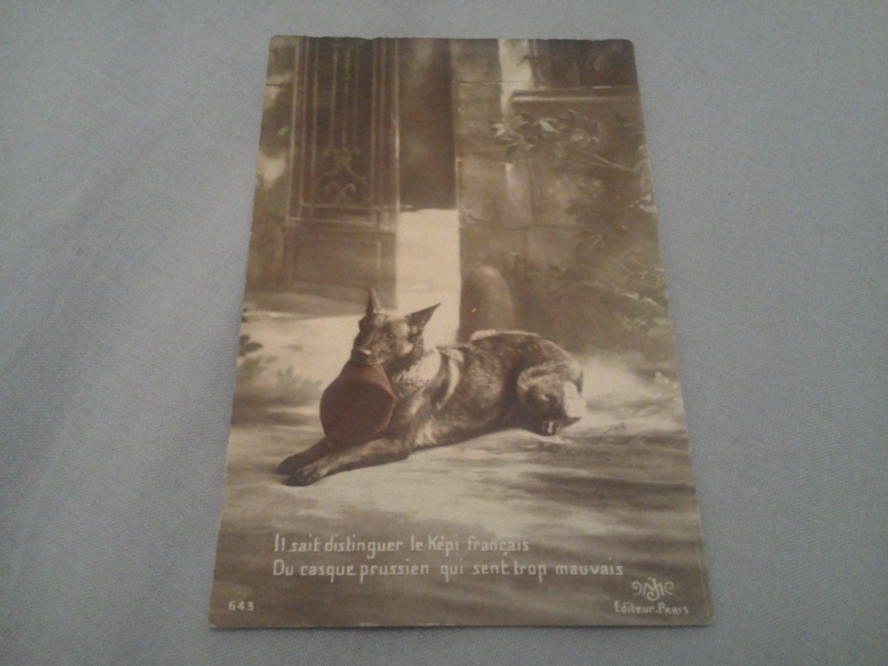 Apprendre  par les cartes postales et photos - Page 5 Photo124