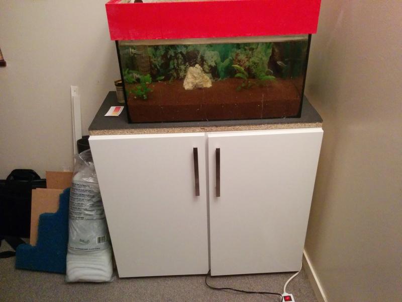Nouveau meuble aquarium Img_2010