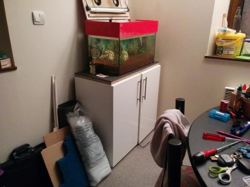 Nouveau meuble aquarium Img_2011