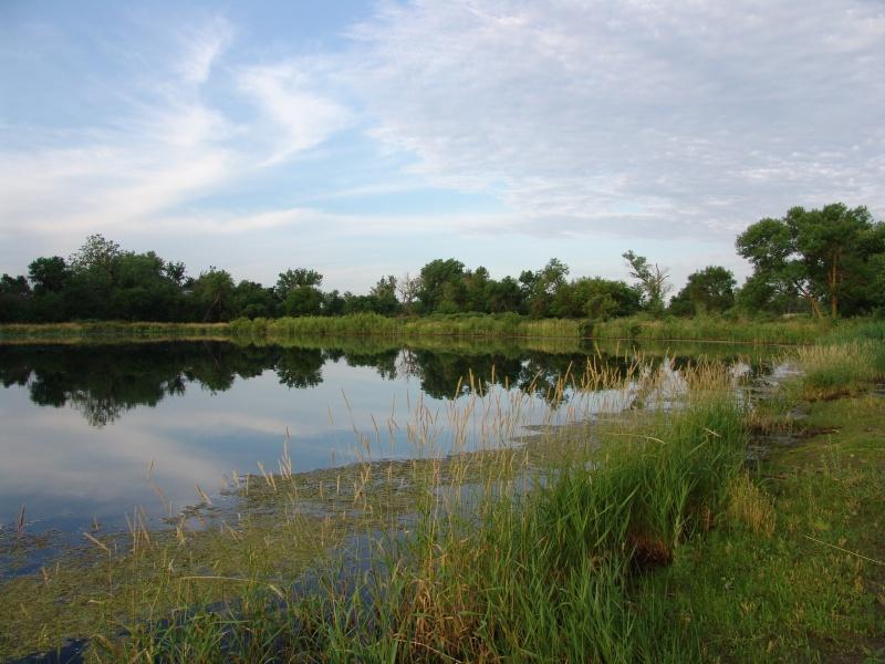 Fishing the I-80 Corridor Dsc00113