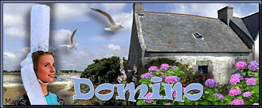 Bonheur, souci, espoir Domino10