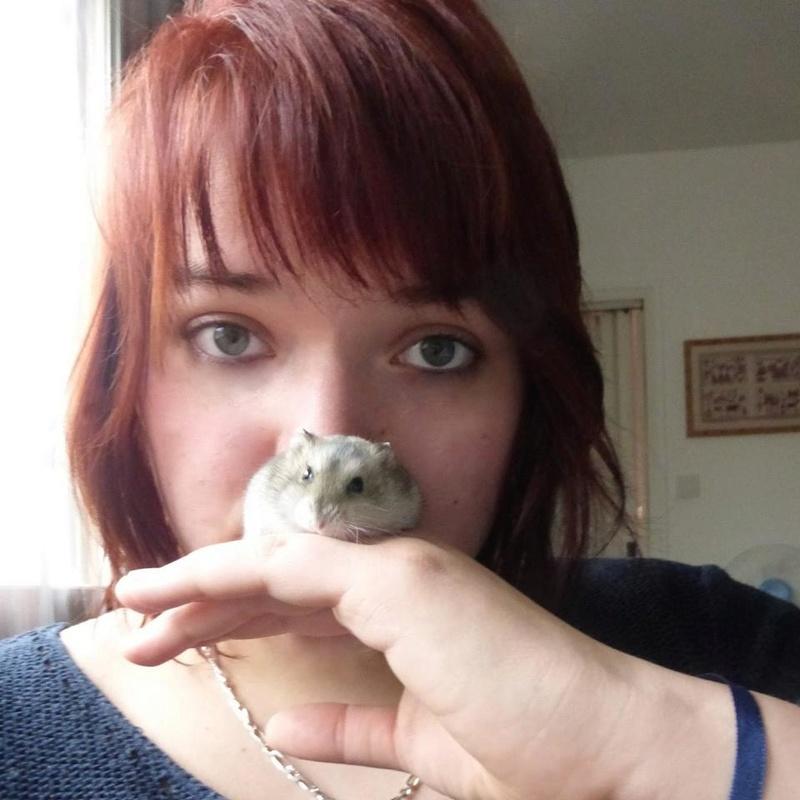 Photos de vos hamsters russes  10982110