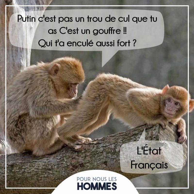HUMOUR - Drôles de bêtes... - Page 4 13533211