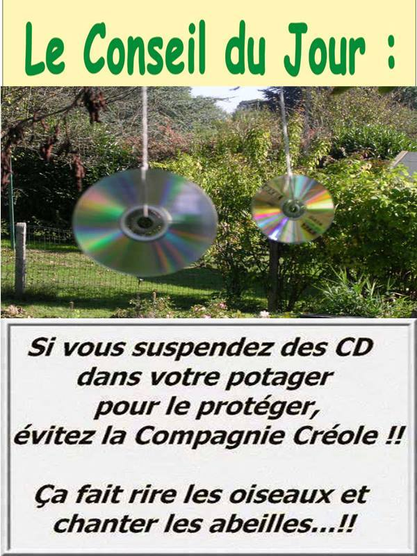 HUMOUR - blagues - Page 5 13537610